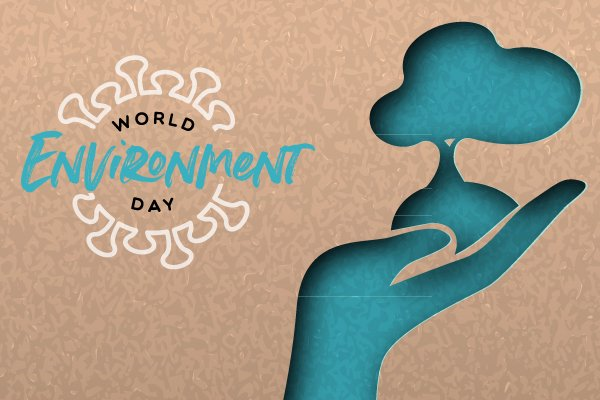 World Environment Day, COVID and Healthcare